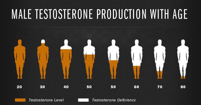 padidėjęs testosteronas ir erekcija