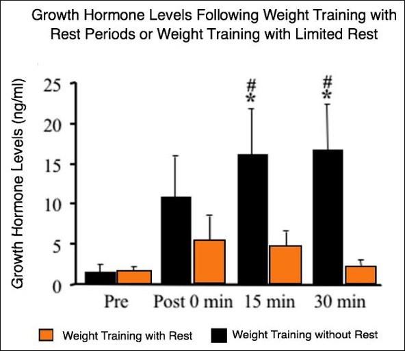 koks hormonas veikia varpos augimą