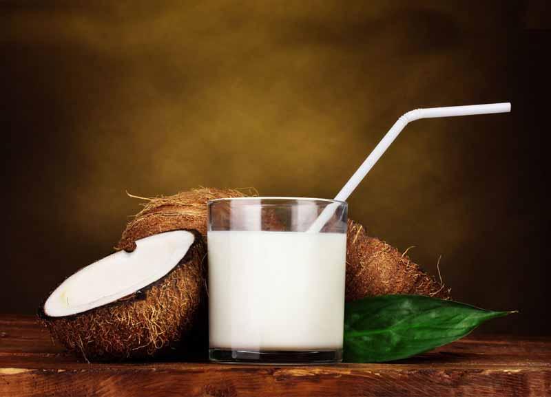 kokosu pienas kas tai