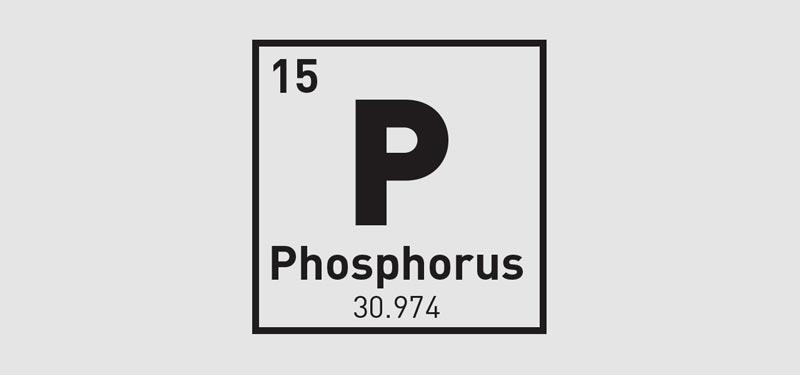 fosforas
