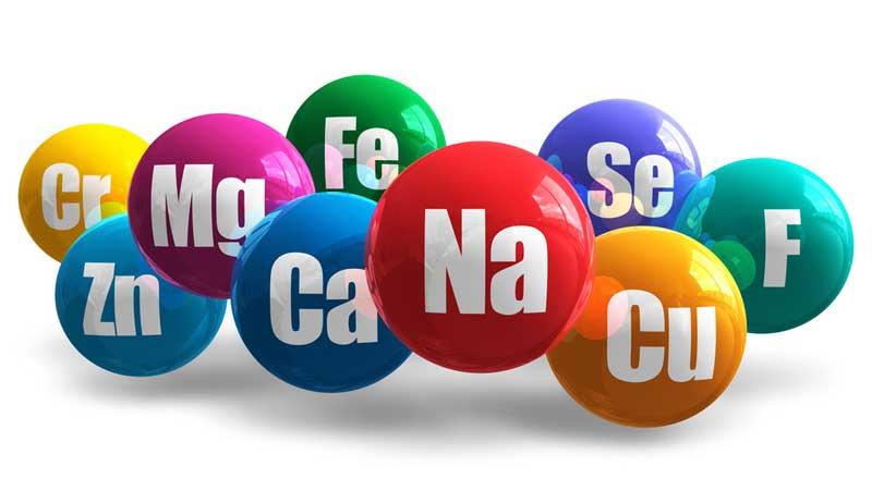 mineralai makromineralai mikromineralai