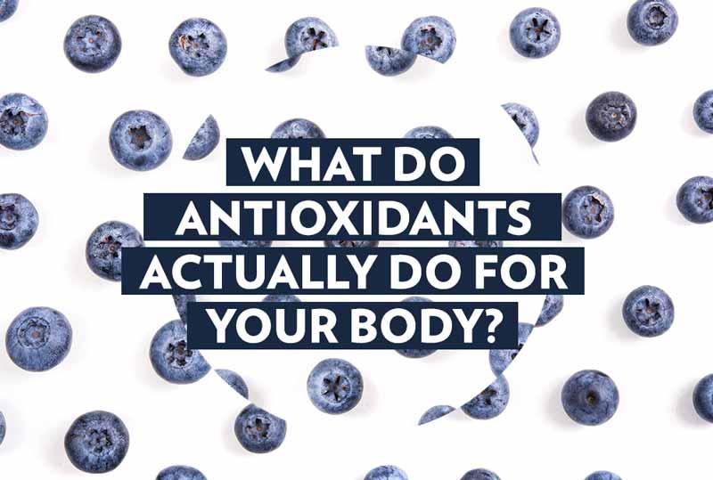 goji uogos antioksidantai