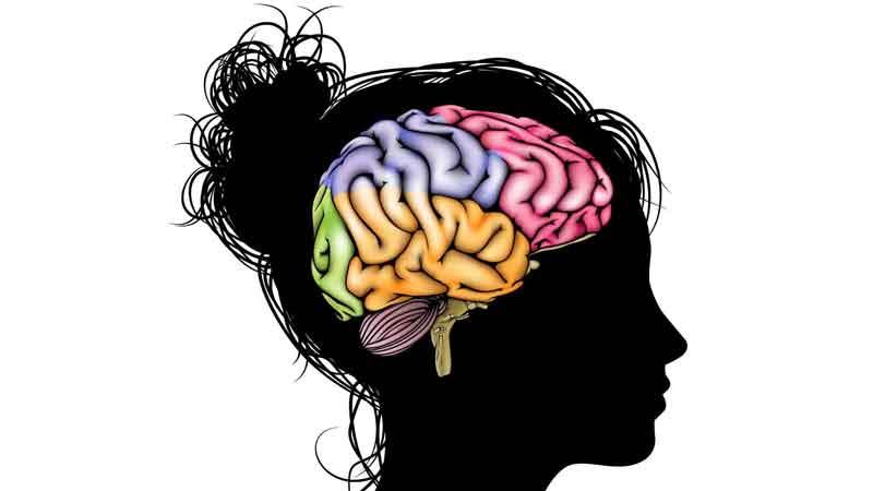kofermentas q10 smegenims