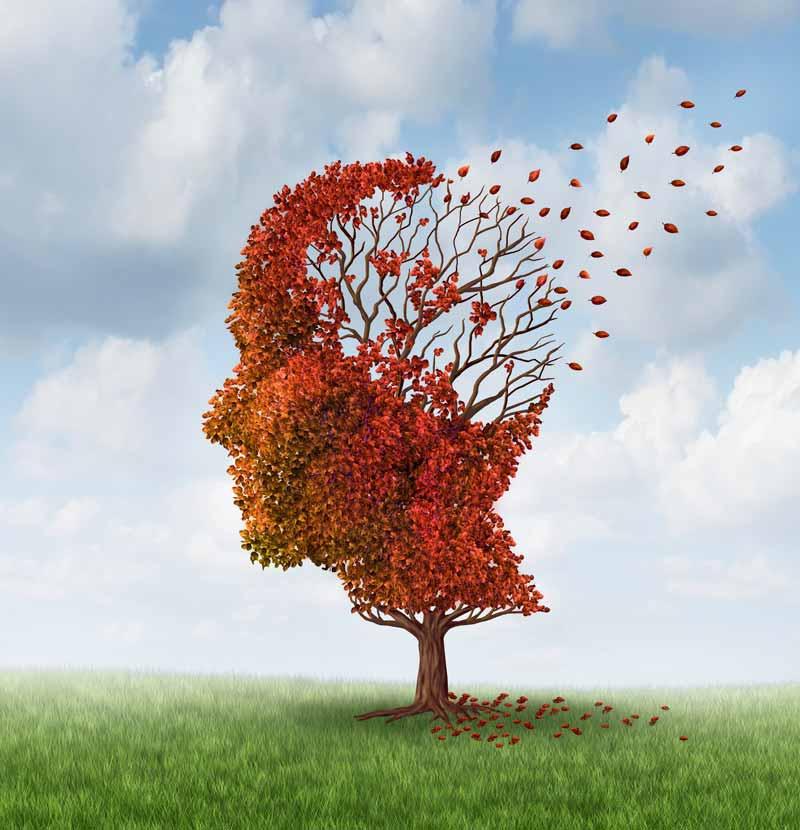 cinamonas neurodegeneracines ligos