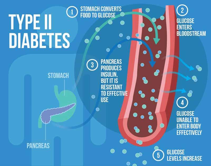 magnis kovoja su 2 tipo diabetu
