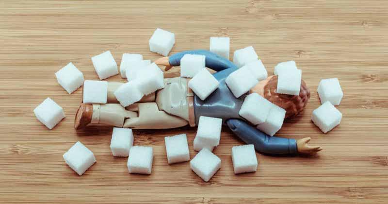 tribulus terrestris cukraus kontrole ir cholesterolis