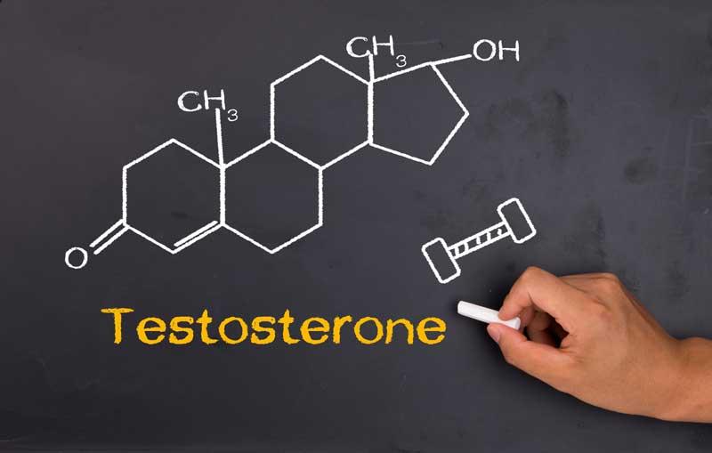 tribulus terrestris ir testosteronas