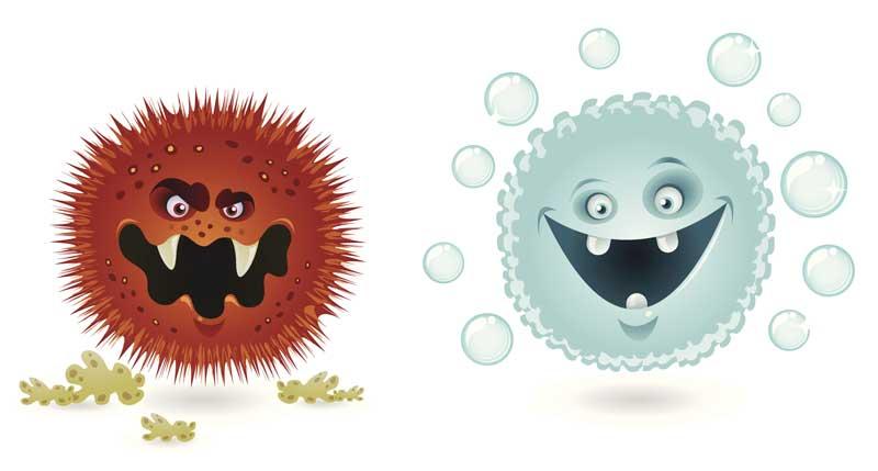 raudonelis ir bakterijos