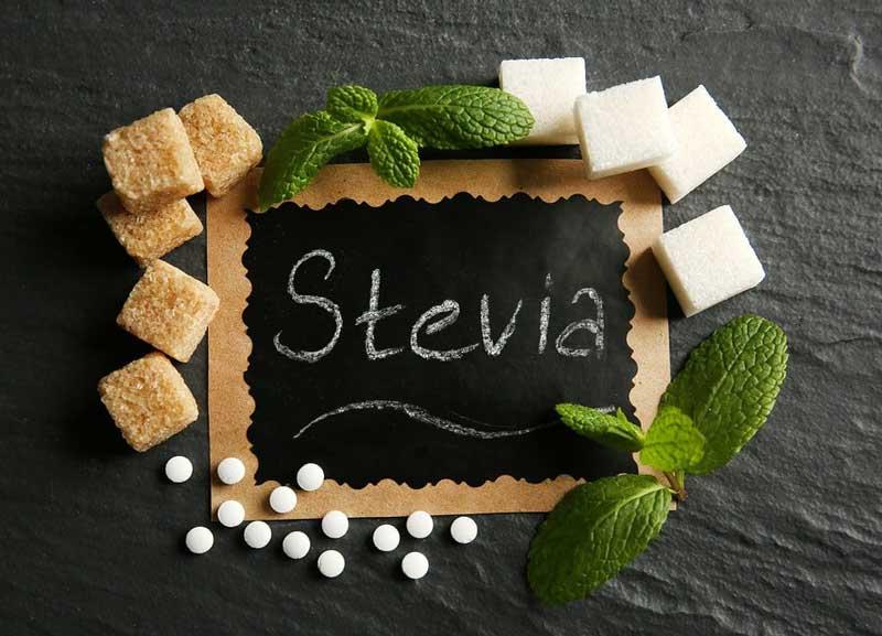 stevija kas tai