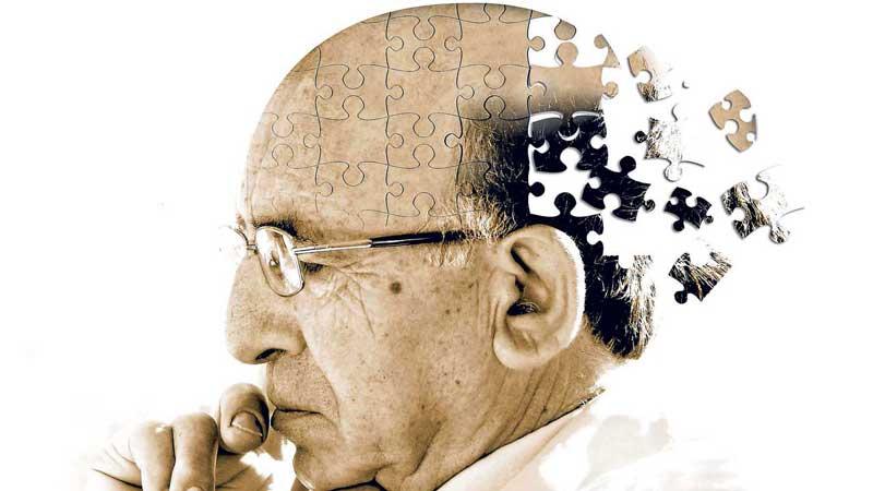 kurkuminas ir alzheimerio liga
