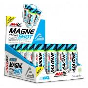 Amix™ MagneShot Forte 375 mg 20x60 ml
