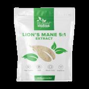 Raw Powders Lion's Mane 5:1 ekstraktas 100 g.